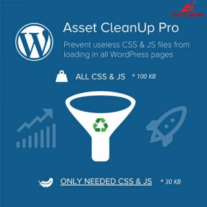 Plugin-Asset-CleanUp-Page-Speed-Booster-PRO